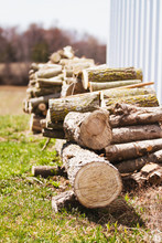 Pile Of Wood Stacked Against A Wall With Trees And Field In Background; Logs Sawed Into Sections And Stacked For Burning