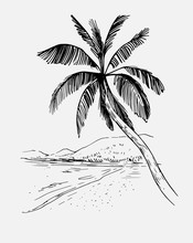 Tropical Landscape With Palm Trees. Hand Drawn Outline Converted To Vector