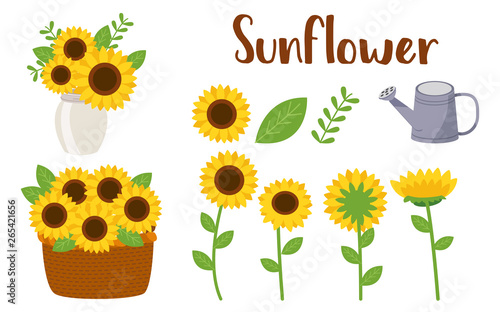 The Pack of sunflower part.Sunflowers set. Collection decorative floral design elements for decorate card and banner. flat vector illustration style. flower and leaf part of sunflower.watering can