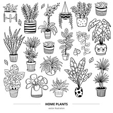 Set Of Lovely Plants In Pots. Doodle Monochrome Vector Illustration. Natural Design Elements Can Be Used For Postcards, Banners, Websites Or Ads.