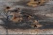 Naturalne drewno Vintage wood