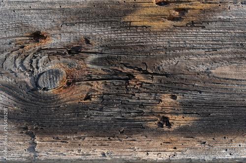 Obraz Naturalne drewno Vintage wood - fototapety do salonu