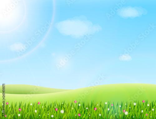 Carta da parati Summer meadow landscape with green grass, flowers, hills and sun