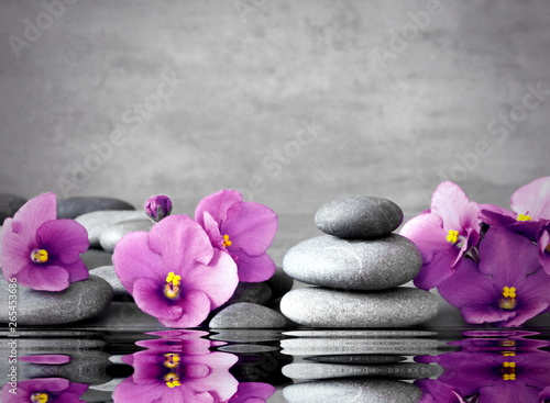 Poster Spa Pink flower and stone zen spa on grey background