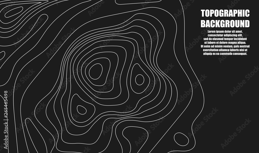 Fototapeta Background of the topographic map. Topographic map lines, contour background. Geographic grid, vector abstract.