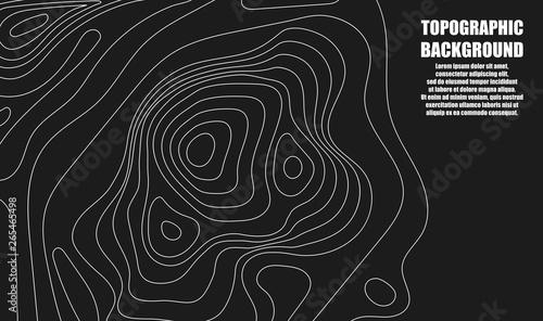 Fototapeta Background of the topographic map
