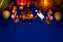 Decorate The Variety Lanterns ...