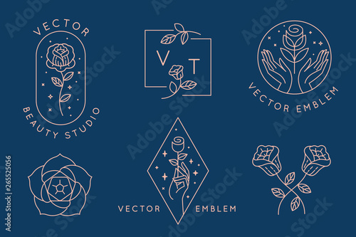 Vector abstract logo design templates in trendy linear minimal style - hands with rose