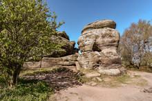 Brimham Rocks, In North Yorksh...
