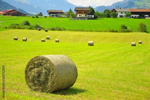 Papiers peints Vert chaux Austria_field_hay_house_landscape