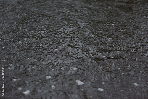 Tuinposter Stenen drops of rain on the surface of the puddle