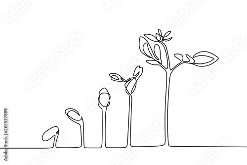 Plant growing continuous line drawing one hand drawn minimalist design Fototapete