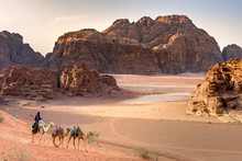 Beduin And Camels In Wadi Rum ...