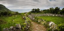 Dirt Path Through Rural Fields