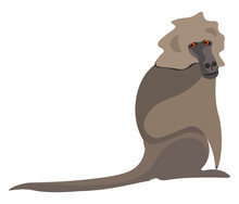 Clipart Of A Baboon Vector Or ...