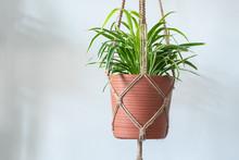 A Jute Twine Macrame Plant Han...