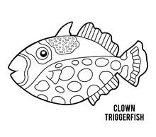 Coloring Book, Clown Triggerfish