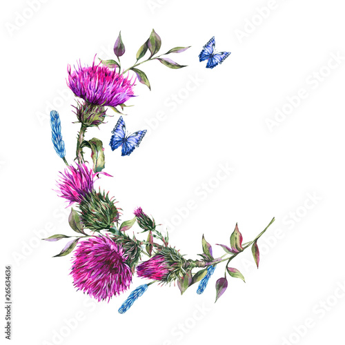 Fototapeta Watercolor thistle round frame, blue butterflies, wild flowers illustration
