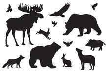 Wild Forest Animals Silhouette...