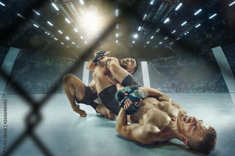 Hot atmosphere. Two professional fighters posing on the sport boxing ring. Couple of fit muscular caucasian athletes or boxers fighting. Sport, competition and human emotions concept.