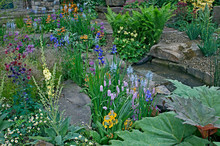 A Country Cottage And Garden S...