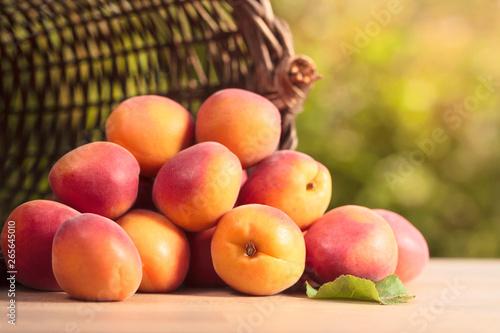Fototapeta basket with ripe apricots obraz