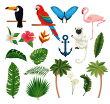 Set Exotic Animals With Tropical Leaves And Palms