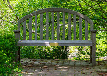 Shaded Memorial Bench With Blank Bronze Plaque.