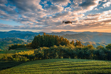 Modern Drone With Camera Flying Over Mt. Fuji With Green Tea Field At Sunrise In Shizuoka, Japan.