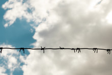 Barbed Wire Against Cloudy Sky, Copy Space For Text. Imprisonment Concept. Wire With Clusters Of Short, Sharp Spikes Set At Intervals Along It, Used To Make Fences Or In Warfare As An Obstruction.