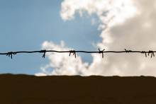Barbed Wire Fence Against The Blue Sky. Wire With Clusters Of Short, Sharp Spikes Set At Intervals Along It, Used To Make Fences Or In Warfare As An Obstruction..