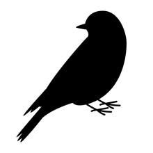 Bluebird Vector Illustration, Black Silhouette, Profile