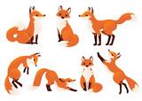 Fototapeta Fototapety na ścianę do pokoju dziecięcego - Cute cartoon fox set. Funny red fox collection. Emotion little animal. Cartoon animal character design. Flat vector illustration isolated on white background