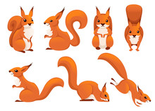 Cute Cartoon Squirrel Set. Fun...