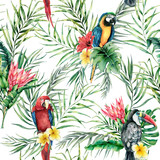 Fototapeta Bedroom - Watercolor parrot and toucan seamless pattern. Hand painted illustration with bird, protea and palm leaves isolated on white background. Wildlife illustration for design, print, fabric, background.