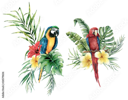 Fotografie, Obraz  Watercolor tropical set with parrots and flowers bouquet