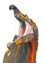 Spinosaurus In White Background And No Shadows