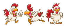 Chicken Vector Clipart Design