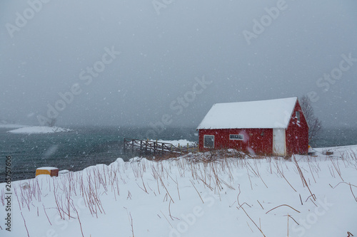 Heavy snowfall in Lofoten Islands, Norway, over a traditional red house, during a cold winter day
