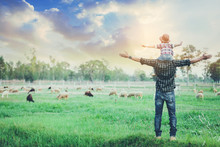 Father And Son Standing Back Together And Open Arms Looking At Sheep Grazing On Farm With Sunset Background