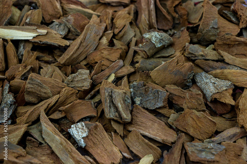 Photo Stands Firewood texture Dry Quinine herb for medicine