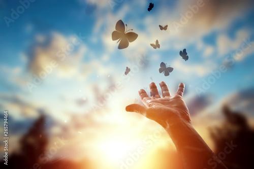 Hands close up on the background of a beautiful sunset, a flock of butterflies flies, enjoying nature Wallpaper Mural