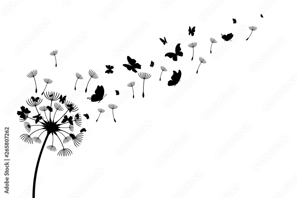 Fototapety, obrazy: Dandelion with flying butterflies and seeds. Vector isolated decoration element from scattered silhouettes. Conceptual illustration of freedom and serenity.