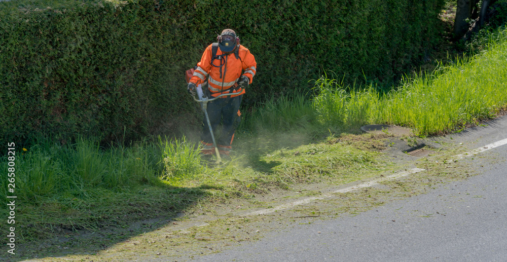 Fototapety, obrazy: city maintenance worker cutting weed on the road shoulder with a strimmer