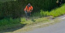 City Maintenance Worker Cuttin...