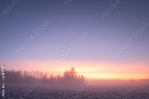 Aluminium Prints Salmon Foggy landsape with vibrant sunset colors and forest at winter evening in Finland