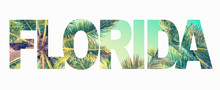 Word Florida With Palm Trees On White Background