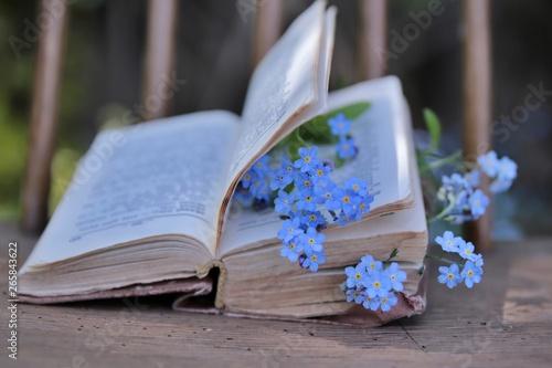 Obraz książka i niezapominajki  - fototapety do salonu