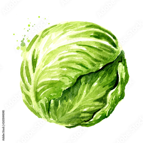 Photo Head of fresh cabbage