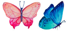 Set Of Watercolor Butterflies Isolated On White